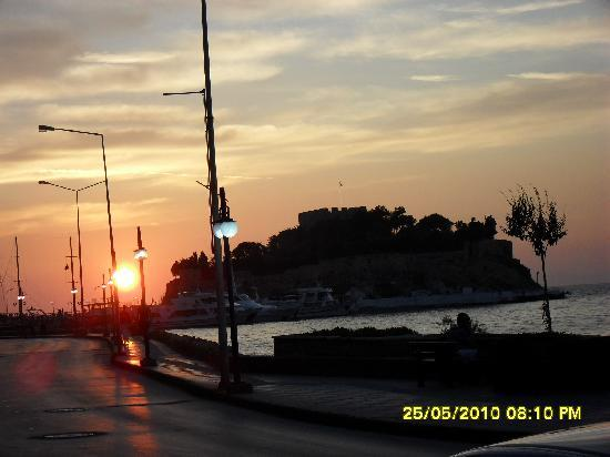 Victoria Bar And Restaurant Kusadasi : BIRD ISLAND FROM VICTORIA