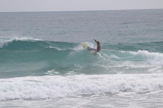 هوكد كاباريت: Surfing