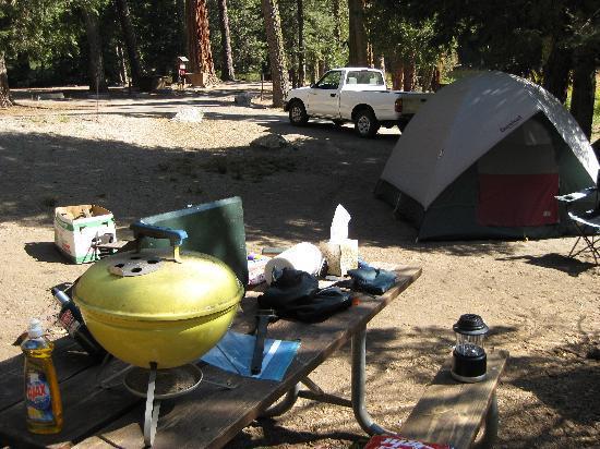 Azalea Campground: My Azalea campsite
