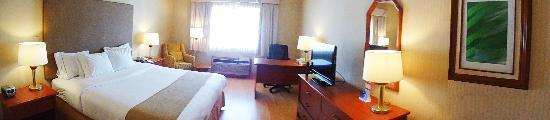Holiday Inn Express Chihuahua: Panoramic view of a standard bedroom