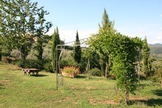 Lionforti da Vico : The garden