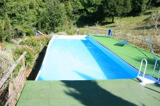 Lionforti da Vico : The pool