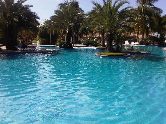 Coche Paradise Hotel Isla Margarita: Piscina de Coche Paradise