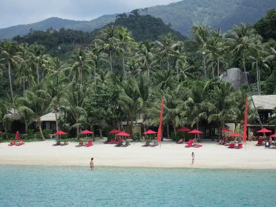 อนันตรา รสานันดา เกาะพะงัน วิลล่า รีสอร์ท แอนด์ สปา: La plage privée de l'hôtel
