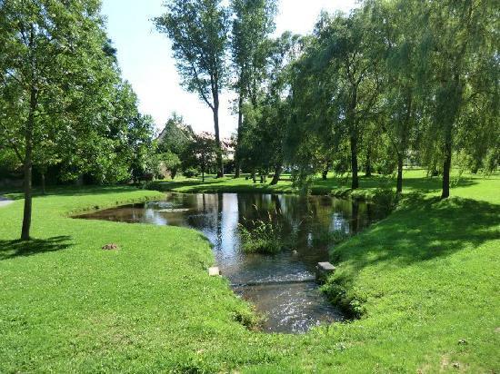 Wasserschloss Klaffenbach: Pond in grounds