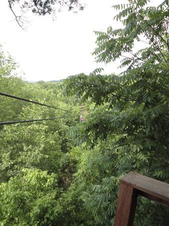 Eagle Falls Ranch Zipline Adventures: Zip Line