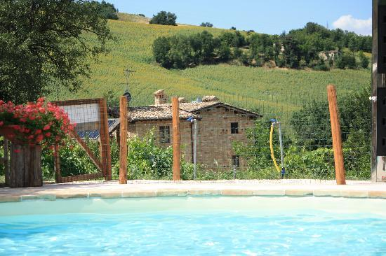 Agriturismo Ramuse: Swimming pool