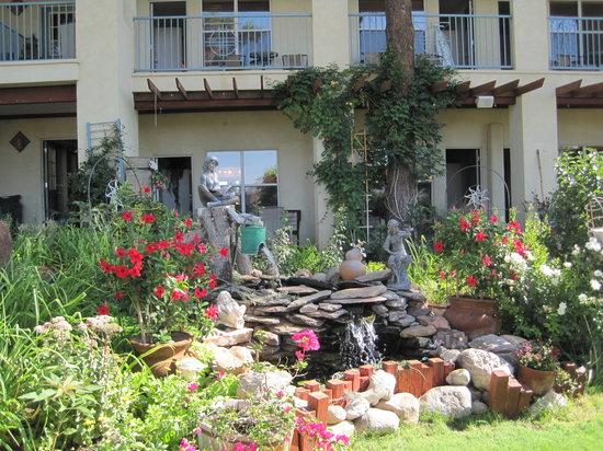 Inn At Paradise: Garden