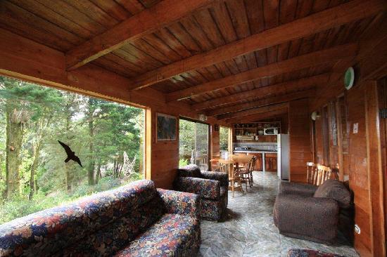Los Pinos - Cabanas y Jardines: Living room of Family Cabins
