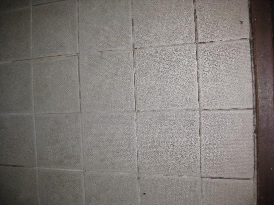 Baggot Court Townhouse - Loose tiles on the bathroom floor