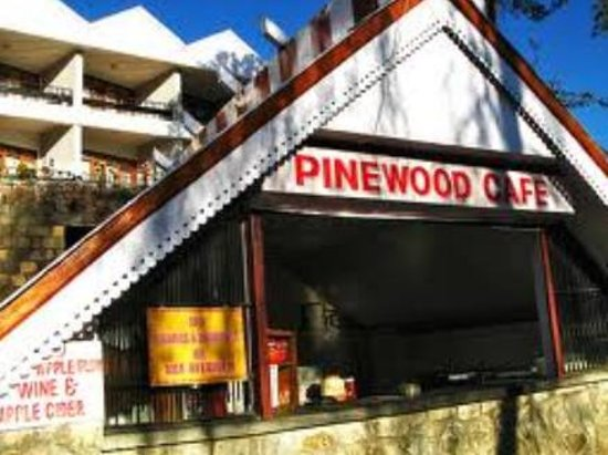 Barog, Indien: The Pinewood(HPTDC)