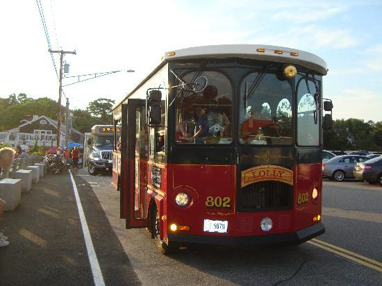 Sea View Motel: Le trolleybus passe régulièrement devant le motel et vous amène au village et à la plage, pour s