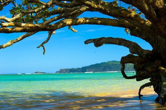 Kauai S Mage Our North Beach Spot