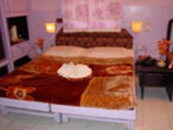 Hotel Mahendra Executive