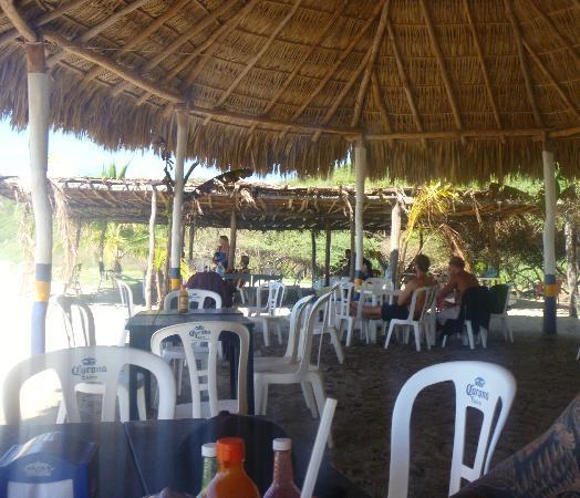 Pepes Cabanas Surf Camp: shade / hammocks / cafe & amenities by beach