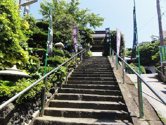Manpukuji Temple: 参道