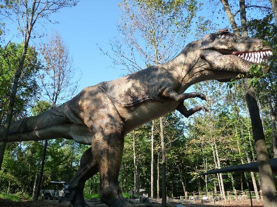 T rex at dinos alive bild fr n kings island mason for T rex location