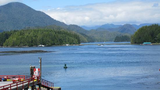Tofino Inlet Cottages: View from our cottage!