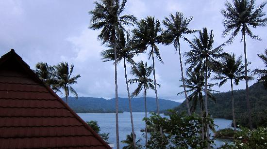 DABIRAHE Dive, Spa and Leisure Resort (Lembeh): the view from the room