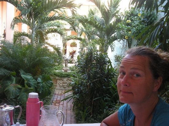 Hostal Autentica Pergola: pergola garden