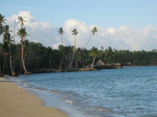 โคโคนัทบีชคลับ: The lovely beach a short walk from the resort