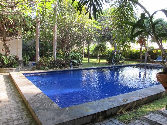 Liberty Dive Resort: Liberty Pool Area
