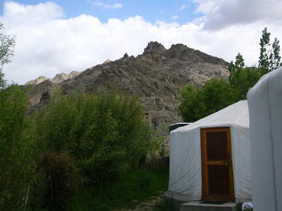 Ladakh Sarai : View from the resort