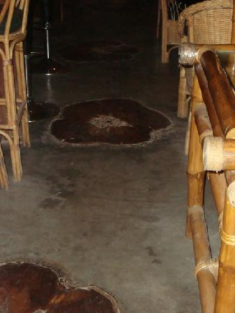 The Lazy Dog : Old Tree Stumps in Floor