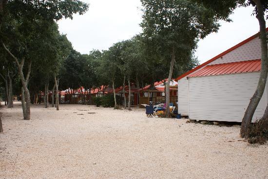 les chalets bel air - picture of camping sunelia le bois fleuri