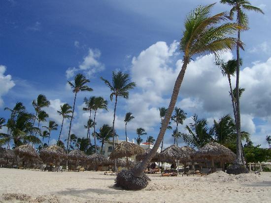 ClubHotel Riu Bambu : Palms on the beach