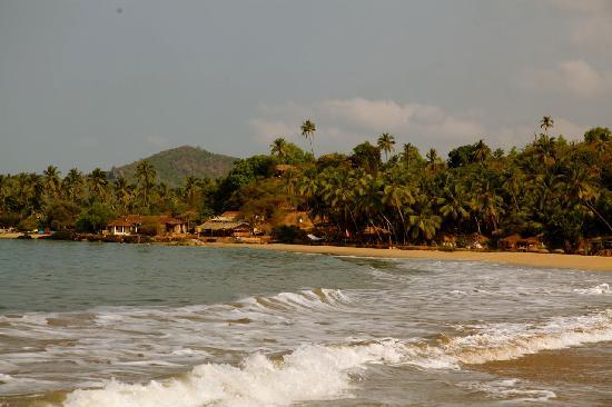 The Turtle Lounge: Patnem beach