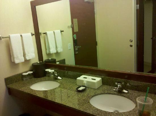 Silver Cloud Inn NW Portland: vanity