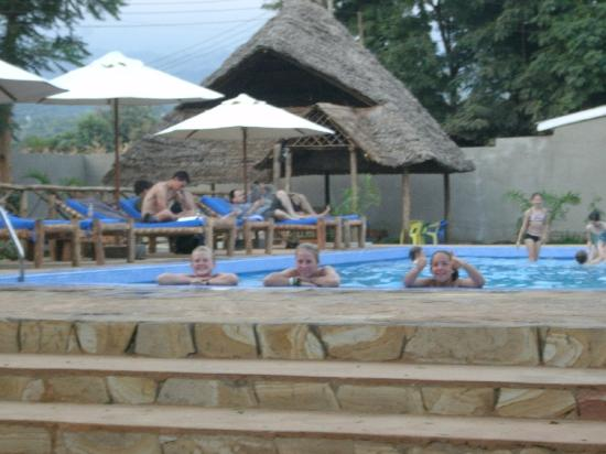 Honey Badger Lodge: go for a swim in the pool!