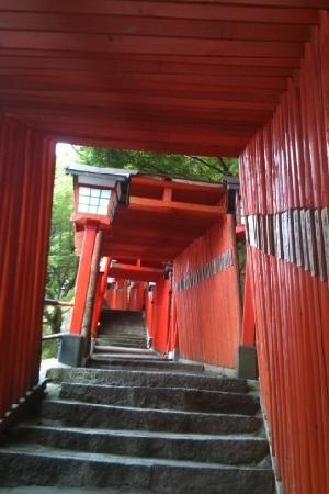 Tsuwano-cho, Giappone: 太鼓谷稲荷神社 階段鳥居
