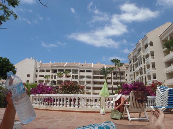 Castle Harbour Apartments : sunbathing area near the pool