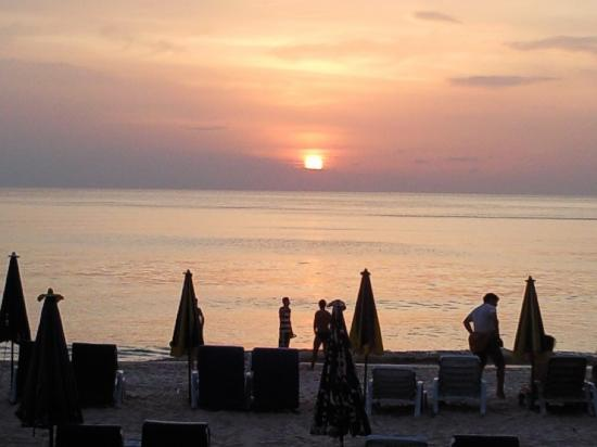 Oasis Guesthouse & Bar : Karon Beach