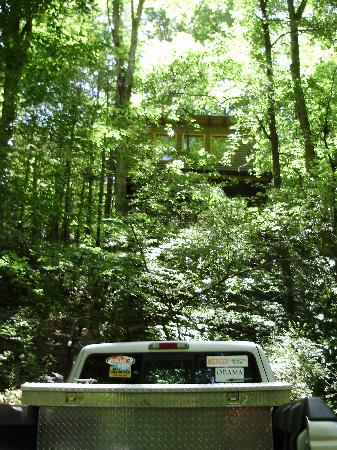 Bear Creek Lodge and Cabins: Parking at the foot of the climb