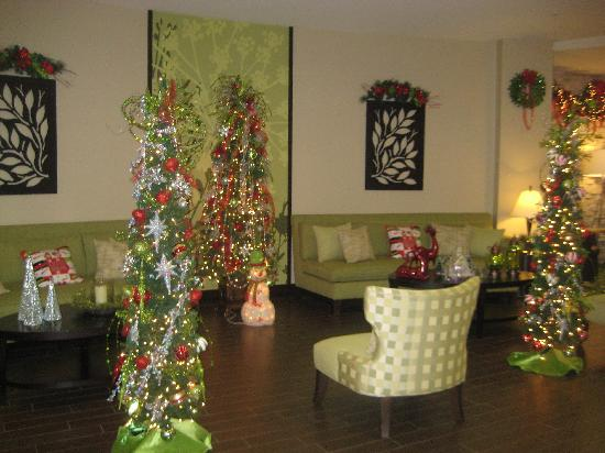 Fairfield Inn & Suites Elkin Jonesville: Lobby Area