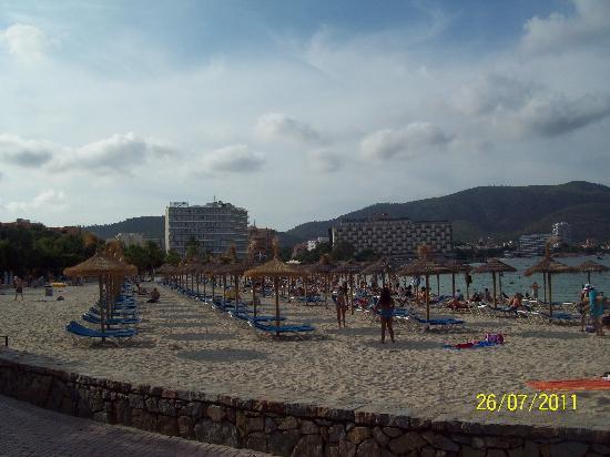 Hotel Seramar Comodoro Playa: The beach