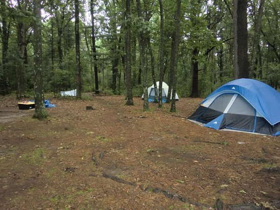 Hartman Creek State Park: Group camp site