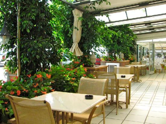 Hotel Rovira: Terraza cafetería