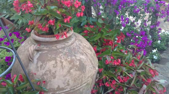 Oleandri Resort Paestum - Hotel Residence Villaggio Club: Flowers allover