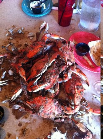 Carousel Resort Hotel & Condominiums: Crab Bag - All you can eat CRABS