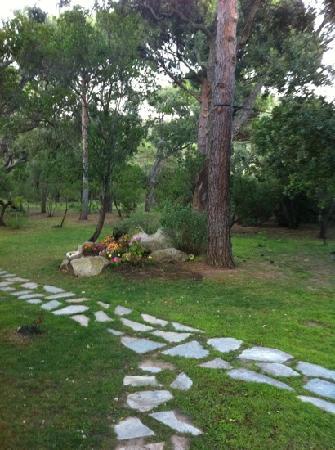Résidence les Lièges de Palombaggia : le parc vu depuis notre terrasse