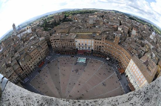 Siena, Italien: Campo from tower