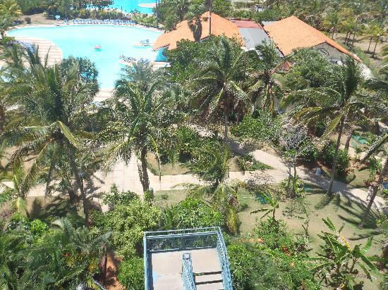 BelleVue Playa Caleta: La piscine