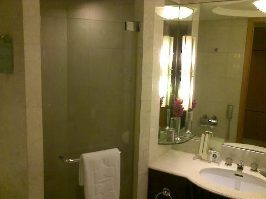 Makati Shangri-La Manila : shower