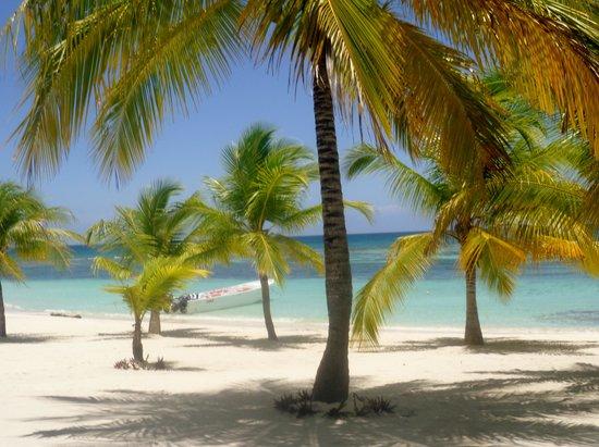 Isla Saona: beautiful sand