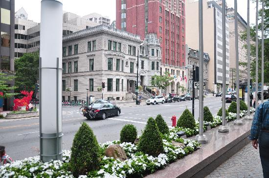Sofitel Montreal Golden Mile: hotel surroundings