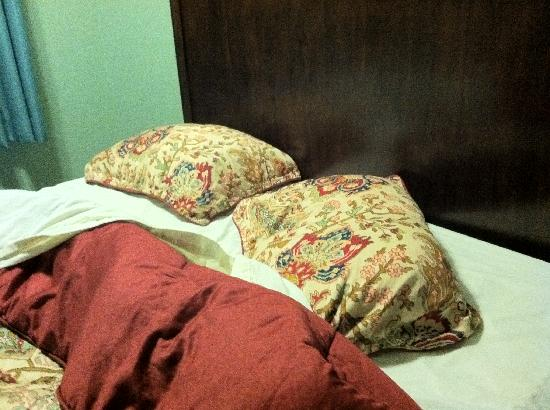 Rio Inn and Suites: Only two small pillows per bed - I'd preferred white cases